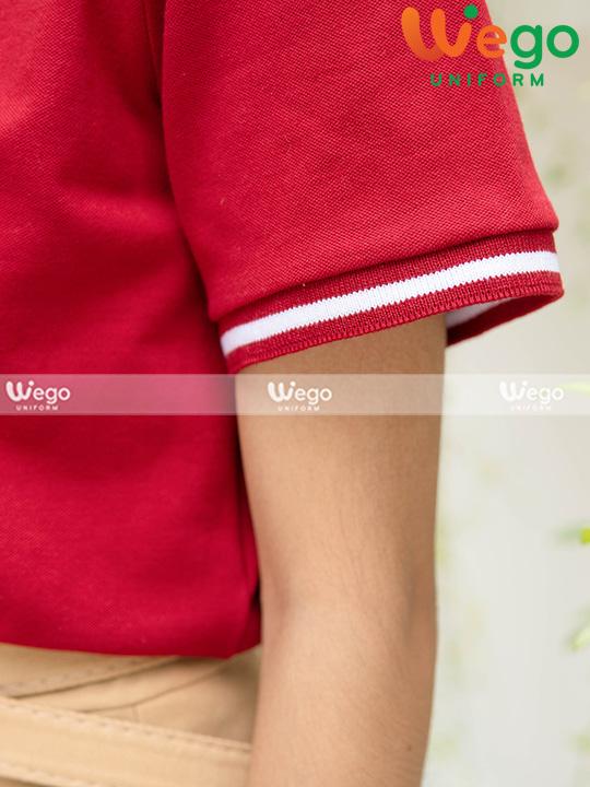 Áo phông đồng phồng phục cao cấp DP0016-4