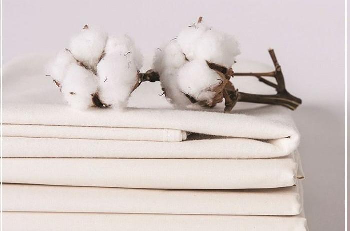 Lý do bạn nên chọn cotton làm vải may đồng phục công sở